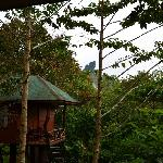 Standard tree house at the Khao Sok Paradise Resort