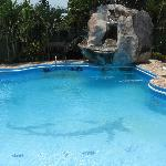 clean & relaxing pool