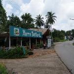 The Happy Turtle Restaurant