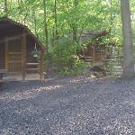 Some of the cabins