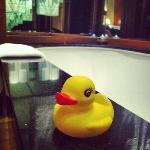 rubber duckie in a bath tub :)