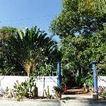 Villa Mozart Zugang Garten