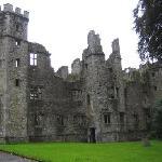 Mallow Castle.