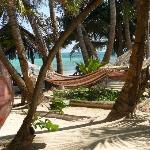 Your hammock awaits on Little Corn Island