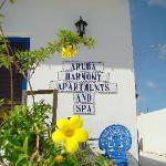 Harmony in Aruba Harmony