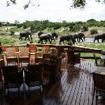 Fire place at Savute Safari Lodge