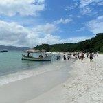 Barcos pescadores arribando a la isla
