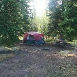 Our campsite in Loop E #239