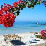 Hotel Beach Club (42096817)