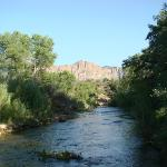 Virgin River (accessed from the back yard)