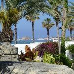 le petit port vu des jardins de l'hôtel