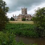 Abbey from water meadow