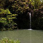 Falls at Pua'a Ka'a