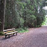 Schöne gepflegte Wanderwege mit vielen Ruhebänken