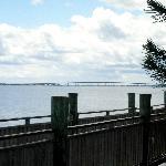 Dolphin Bar & Shrimp House River View