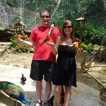 The Aviary...great photo ops
