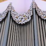 detail organ