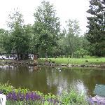 Blick auf einen kleinen See