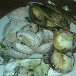 Mussels, Clams and Oysters