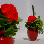 COMPARISON - Floral arrangement with red Geranium of Santorini, green Hydrangea, red Roses, cher