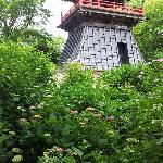 Nogoji Temple(Hydrangea Temple)