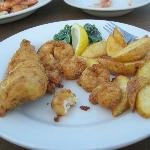 Flounder & Shrimp