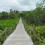 Walk from beach to the main grounds