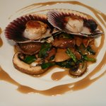 Seared scallops on a bed of mushrooms