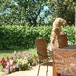 Veranda in giardino apt. Quercia