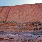 looking up at the sandstone cliffs carved by the Colorado