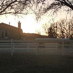 Lazy Dog Ranch at Sunset
