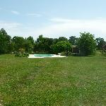 The pool with beautiful surrounding lushness