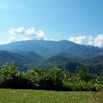 View from unit 410 of Mt LeConte