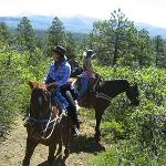 Trail Ride Views