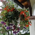 ...die Visitenkarte - der Blumenschmuck....