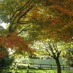 Autumn is a great time to visit