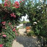 Vue du jardin vers l'entrée