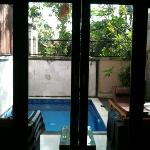 view to the private pool from downstairs bedroom