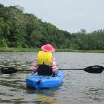 Free kayaks to explore the Sassafras river - eagles nesting nearby