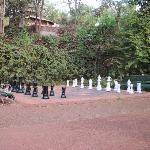 Life size Chess Game