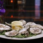 Wellfleet Oysters