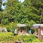 Rear garden of Coed y Bryn B and B in Cardigan