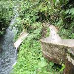 Slide at Falls