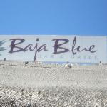 Baja Blue, The best bar in San Jose, CAbo
