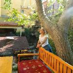 Garden at Stone Hotel