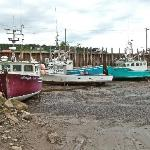 Low Tide in Alma Harbor