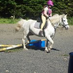 Bantry Pony Trekking - Private Rides