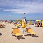 der Strand Pineta