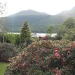 View of Loch Long from front door