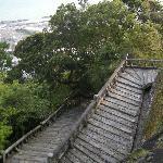 1000 steps-not as hard as it looks...